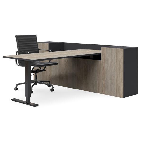 Selectric Executive Desk Height Adjustable